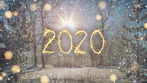 Sparkler text 2020 in winter forest seamless loop 3D render animation Animation