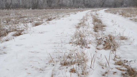 The camera glides over the snow-covered trail Live Action