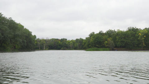 Forest on the other side of a lake or river in cloudy weather Live Action