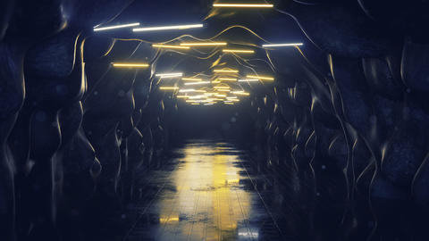 Empty corridor with fluorescent lamps 3D render seamless loop animation Animation