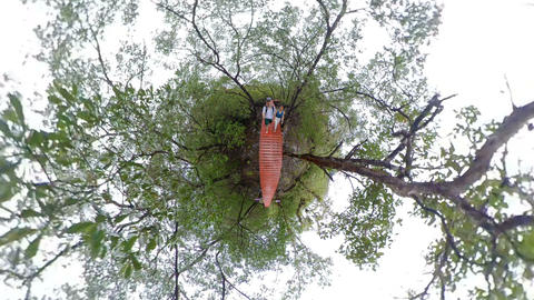 Couple walking in tropical garden of tiny planet Live Action