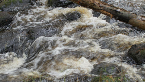 fast mountain stream, slippery stones Live Action