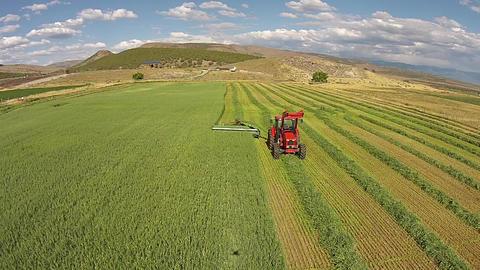 Aerial orange farm tractor harvest cut wheat field HD Footage