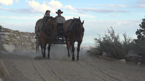 Antique horse and wagon buggy historical recreation Footage