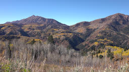 Autumn colors Scenic Byway Nebo Loop Utah mountains 4K Footage