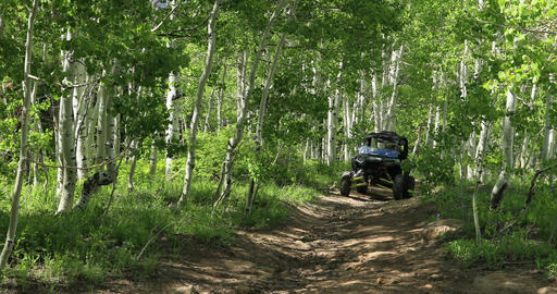 Beautiful mountain trail Aspen recreation 4x4 DCI 4K Live Action