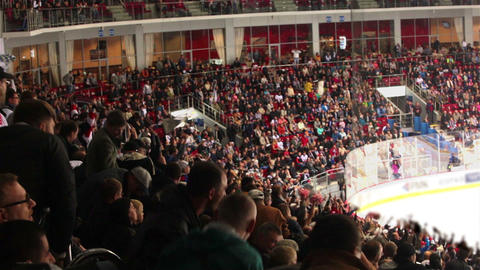 Fans Do The Wave At A Hockey Game Footage