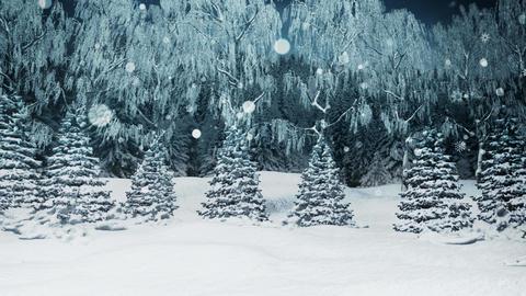Snow Land 02 Animation