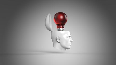 Mind, Stock Animation