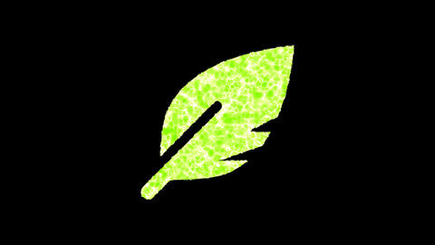 Symbol sharp feather shimmers in three colors: Purple, Green, Pink. In - Out loop. Alpha channel Animation