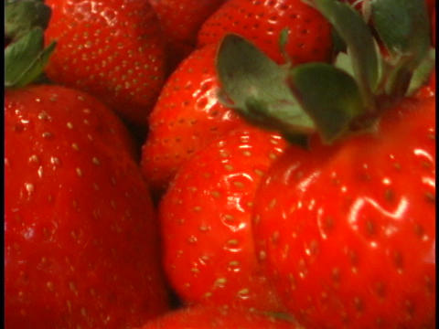 Ripe strawberries are delicious Footage