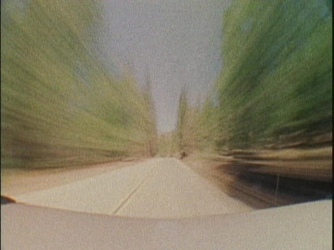 A dirt road leads through a forest Footage