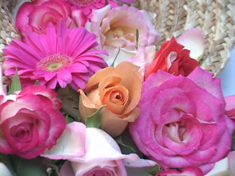Beautiful flowers sit in a vase Stock Video Footage