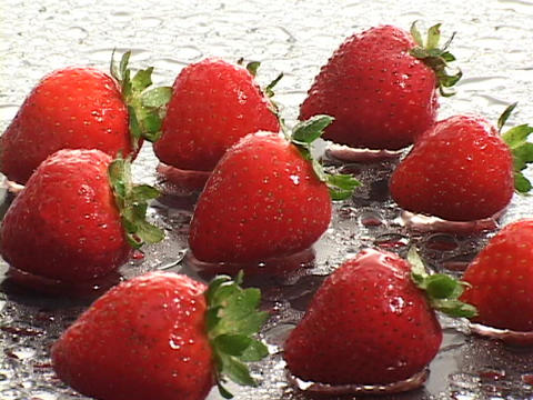 Fresh strawberries occupy a dewy surface Footage