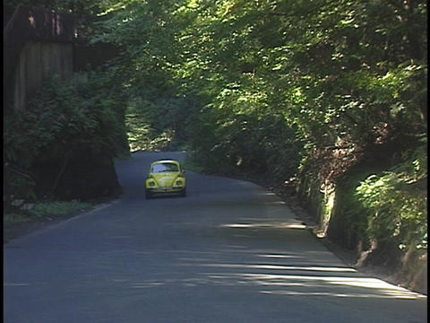 A yellow Volkswagen Bug drives on a country road Live Action
