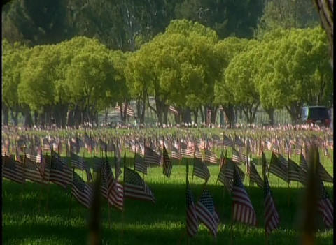 View of a military cemetery with American flags fl Footage