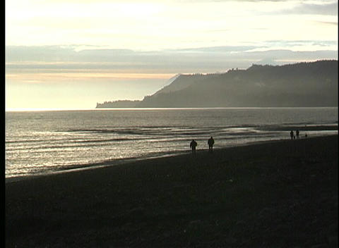 Silhouetted couples share a walk along an ocean beach at... Stock Video Footage
