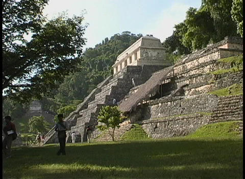 The Temple of Inscriptions, a Mayan Temple in Palenque, Mexico, looms over the jungle floor Footage