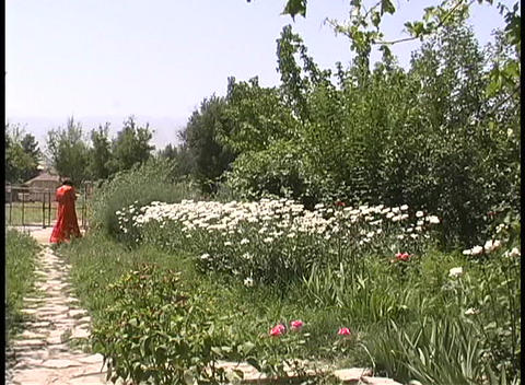 A woman enjoys the beautiful plants and flowers of an... Stock Video Footage
