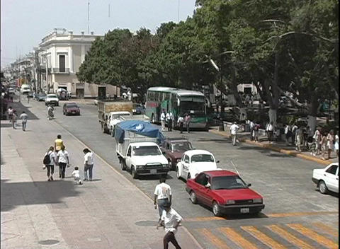 A street scene in Merida, Mexico with just the edge of the tree-lined city square visible Footage