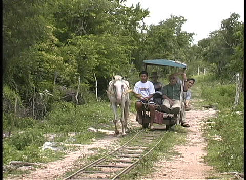 A horse pulls a small rail car with workers on a plantation or small farm in Mexico Footage