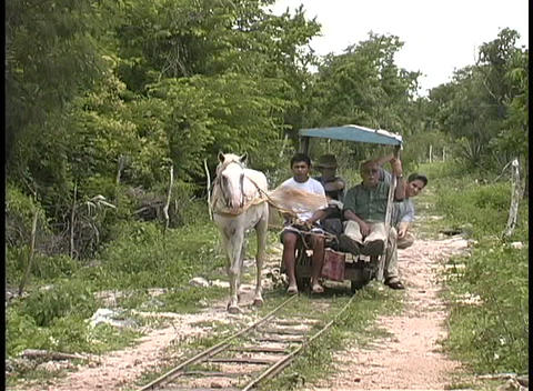 A horse pulls a small rail car with workers on a... Stock Video Footage