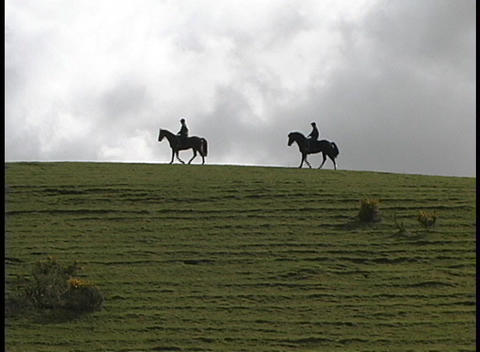 horses and their riders are seen in silhouette on the... Stock Video Footage