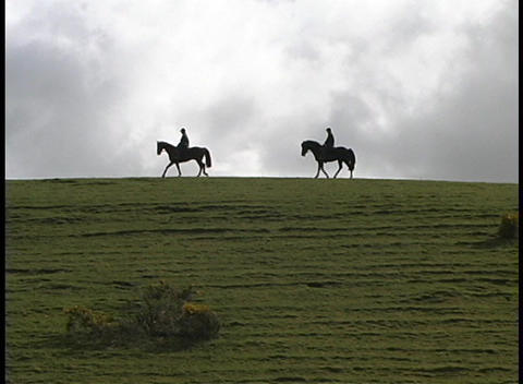 horses and their riders are seen in silhouette on the green Scottish highlands Footage
