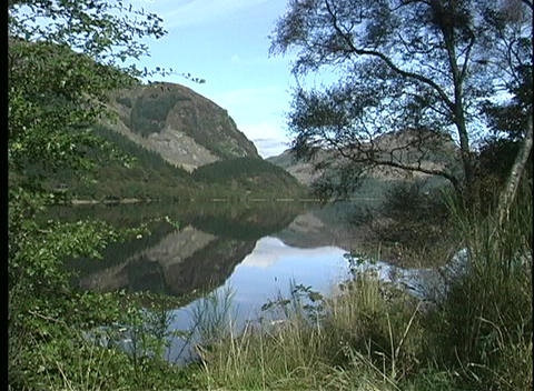A quiet lake in Scotland is framed by pine boughs and other foliage Footage