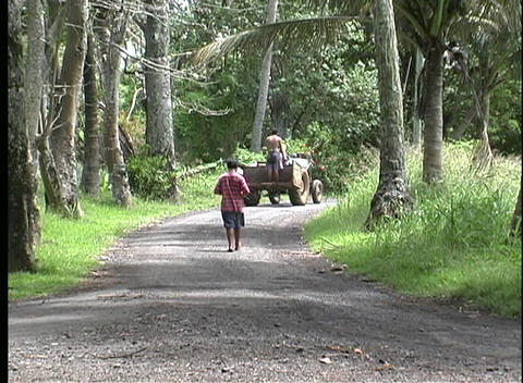 A rural gravel road with a boy walking alone as a tractor... Stock Video Footage