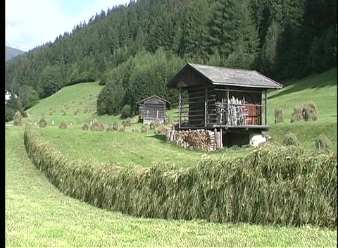 A good crop of hay dries in the green fields of Austria Stock Video Footage