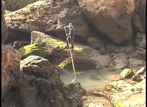 A lone fisherman dips his fishing pole in a pond in Africa Stock Video Footage