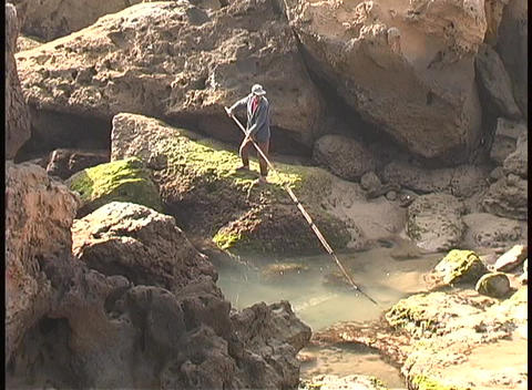 A lone fisherman dips his fishing pole in a pond in Africa Footage