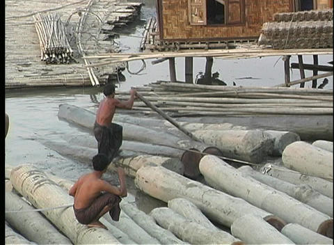 An Asian man walks along a partially submerged log in a logjam, using a long wooden pole to separate Footage