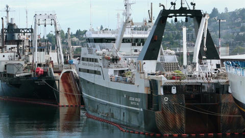 Commercial fishing fleet ships Seattle Port HD 7957 Footage