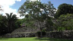 Costa Maya Mexico Kohunlich Mayan Ruins Temple steps 4K Footage