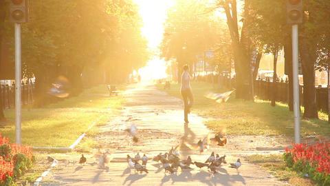 Crazy happiness running scaring birds hopping enjoying sunlight Footage