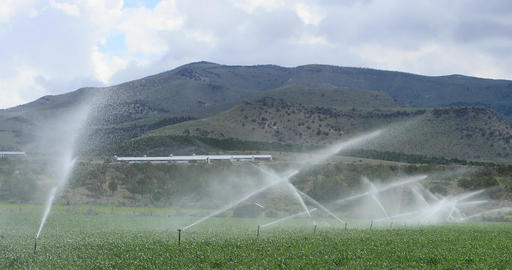 Farm irrigation grain field mountain valley DCI 4K Footage