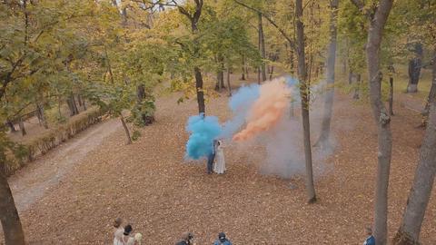 Caucasian groom with bride in the park. Wedding couple. Smoke bombs. Newlyweds ライブ動画