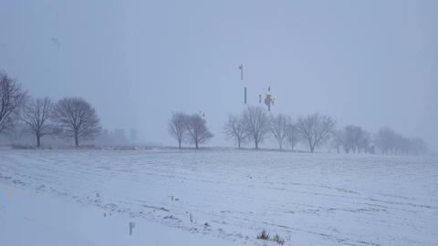 White-Out Snow Storm Blizzard Across Countryside Trees. Heavy Snowing Landscape of Rural Field Live Action