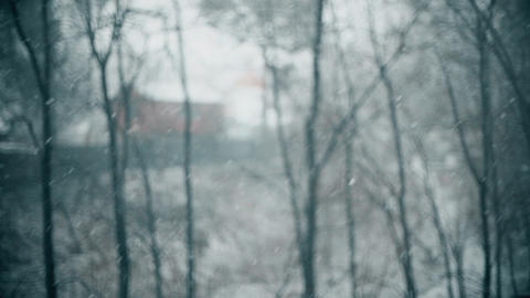 Defocused secluded cabin in the woods in heavy snow, slow motion shot Live Action