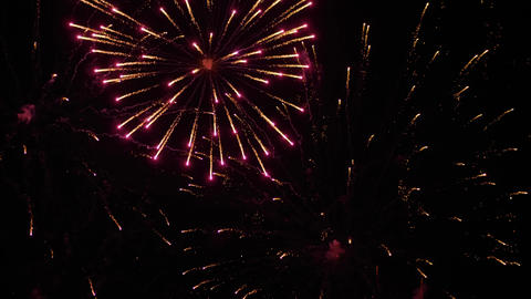 Holiday concept - colorful fireworks in dark sky at night - slow motion ライブ動画
