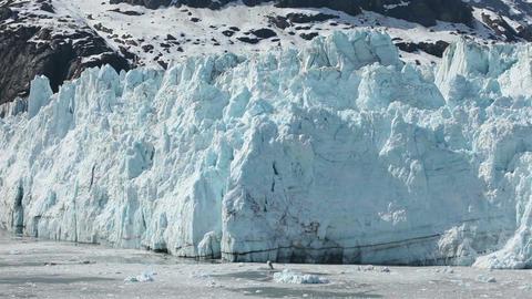 Glacier Bay Alaska tidewater ice flow calving HD 1410 Footage