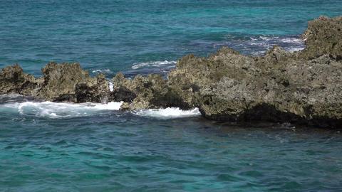 Grand Cayman Caribbean beautiful rocky shore waves 4K Footage