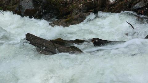 Log in raging flood river snow melt Alaska HD 7158 Footage