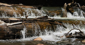 Mountain river stream fallen log waterfall cool clean water DCI 4K Footage
