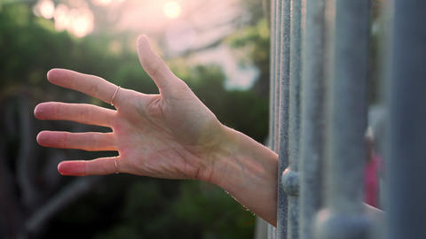 Hand shows various gestures. Different emotions with gestures. A hand peeks out Live Action