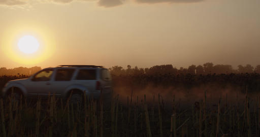 Modern SUV is driving on a dusty road near a field, sunset and lots of dust, 4k Live Action