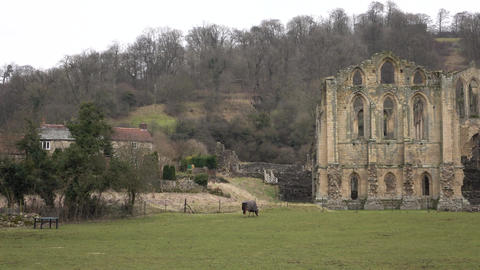 Rievaulx Abbey historic Cathedral ruins England rural 4K Footage