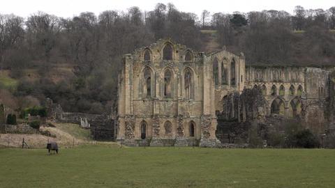 Rievaulx Abbey church ruins England rural pan 4K Footage
